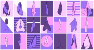 PULPMAG - Labiaplasty Banner Illustration