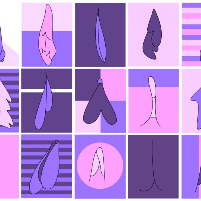 PULPMAG - Labiaplasty Banner Illustration